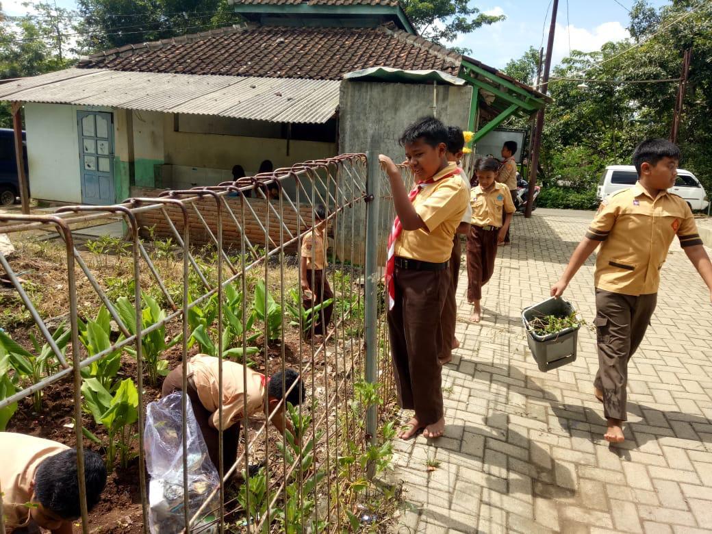 SDIT Nurul Iman Melaksanakan Gerakan Pemberantasan Sarang Nyamuk