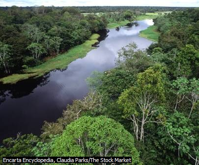 Aliran Sungai Amazon