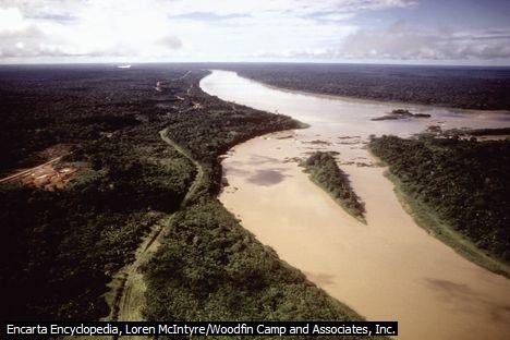 Hutan Hujan Amazon yang rapuh