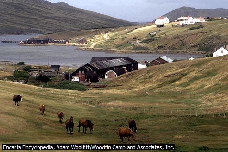 Kepulauan Falkland (Islas Malvinas)